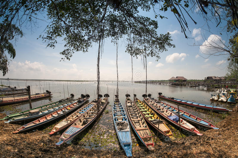 Long-tail boat Thalanoi national park in Phatthalung, Thailand. royalty free stock image