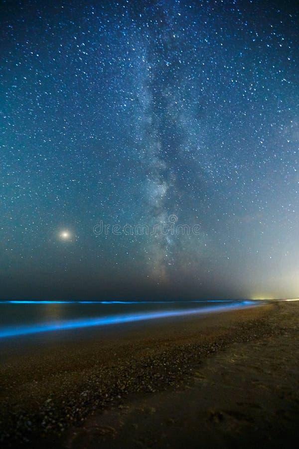 Long tir d'exposition du plancton rougeoyant sur le ressac de mer et le chemin laiteux Lueur bioluminescente bleue de l'eau sous  images libres de droits