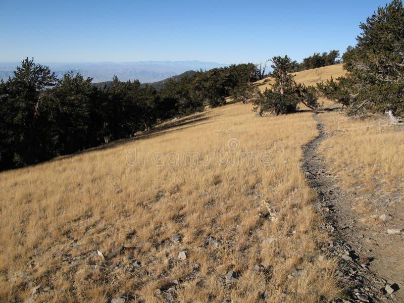 Long trail stock photos
