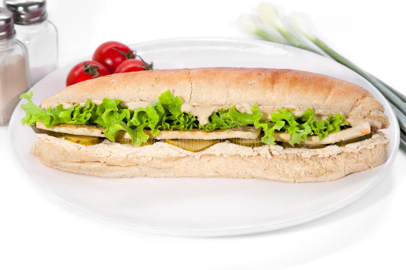 Long vegan sandwich. Made from integral bred with tofu fry cheese, soya mayonnaise, lettuce, sourly cucumber, serve on plate stock photos