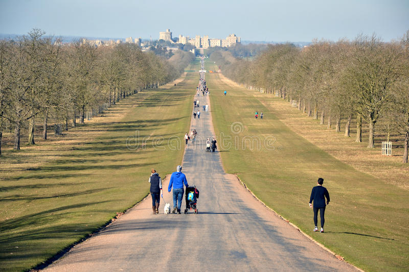 The Long Walk, Windsor Great Park, Windsor Castle, England. The Long Walk, Windsor Castle, England - the avenue located in Windsor Great Park; spectacular view stock images
