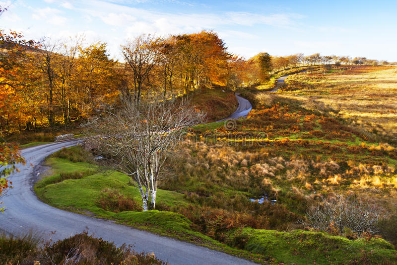 Download The Long and Winding Road stock image. Image of road - 27411993
