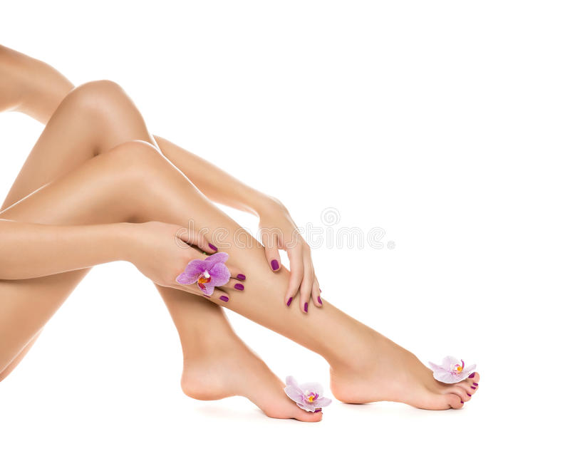 Download Long Woman Legs And Orchids Stock Photo - Image: 33533940