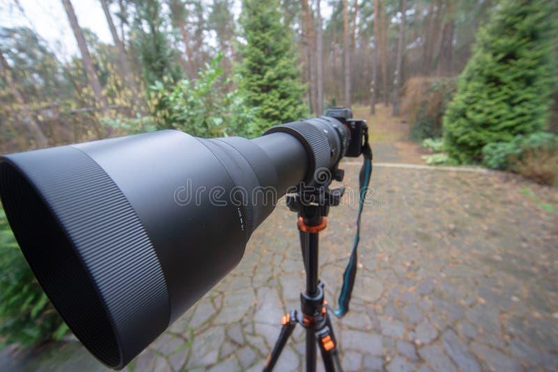 Long zoom noir avec la longueur focale 150 millimètres à 600 millimètres sur une caméra mirrorless sur un trépied photographie stock libre de droits