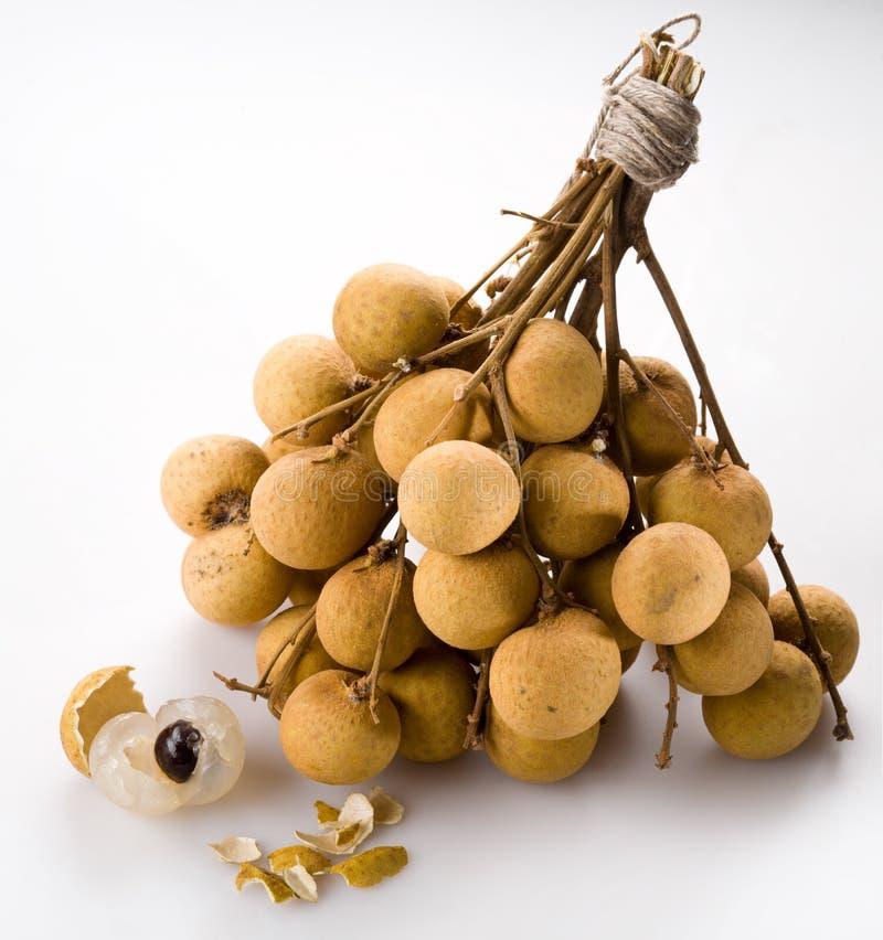 longan异乎寻常的果子 库存图片