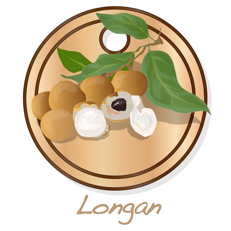 Longan, Dimocarpus Longan Longanvektorillustration auf Teller lokalisiertem weißem Hintergrund lizenzfreie abbildung
