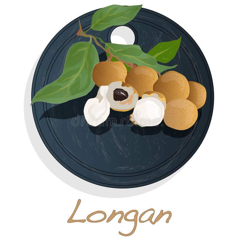 Longan, Dimocarpus Longan Longanvektorillustration auf Teller lokalisiertem weißem Hintergrund stock abbildung