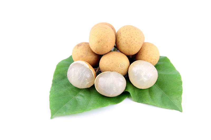 Longan Of Fruit And Leaves Tree. Royalty Free Stock Images