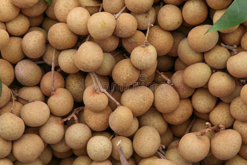 Longan, frutta tropicale fotografie stock