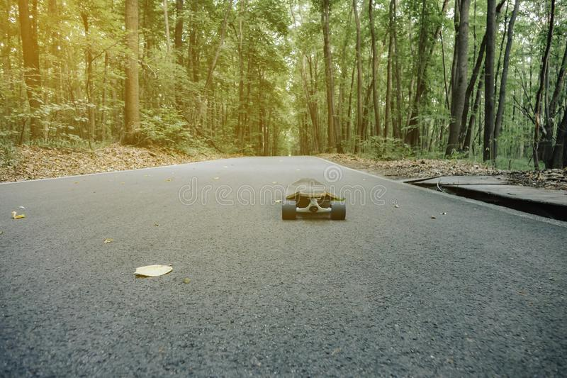 Longboard on the road in the woods Longboard outdoors. Forest, close, uo, fall, leaves, outside, skateboard, landscape, nature, travel, wallpaper, account royalty free stock photography