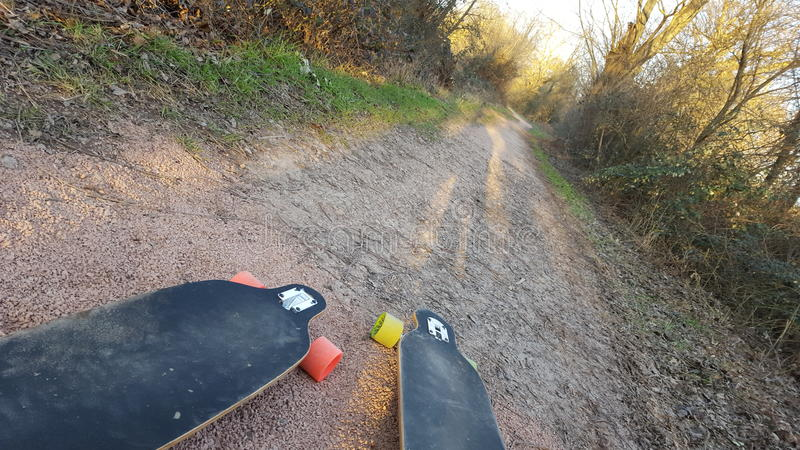 Longboards in the woods royalty free stock photography