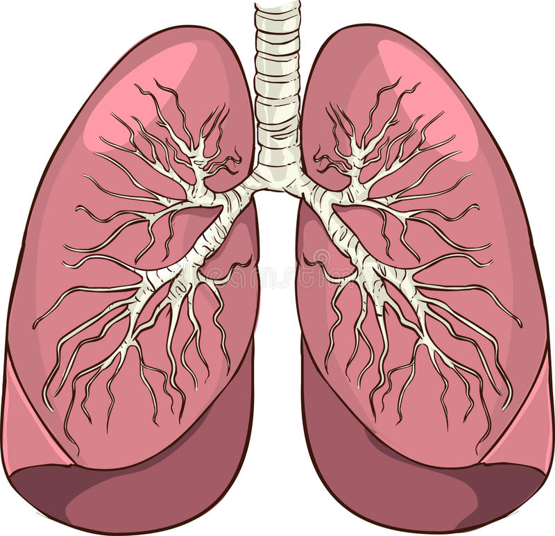 longen stock illustratie