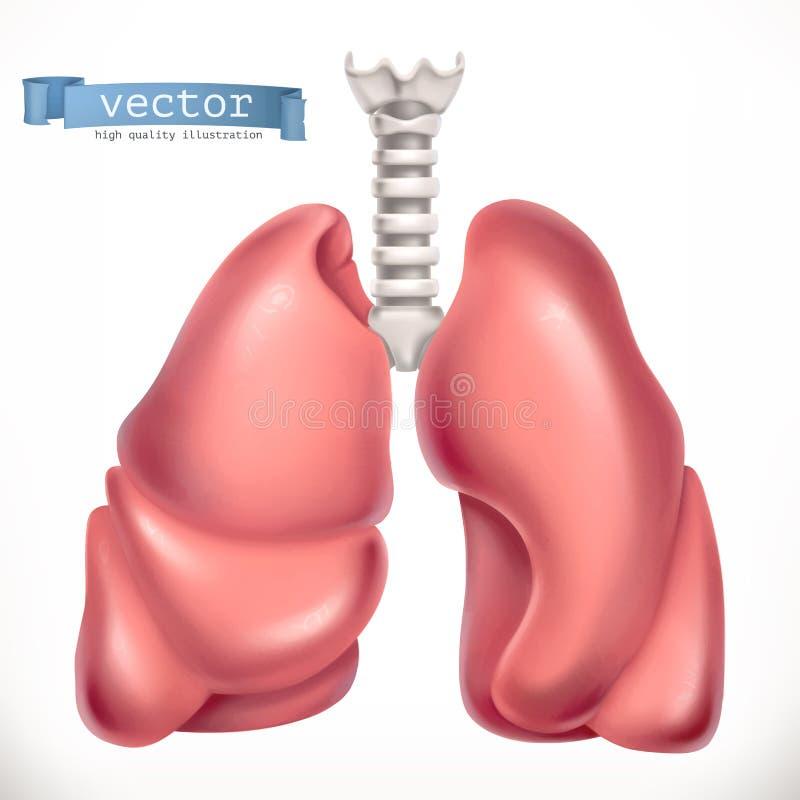 longen Geneeskunde, interne organen 3d vector royalty-vrije illustratie