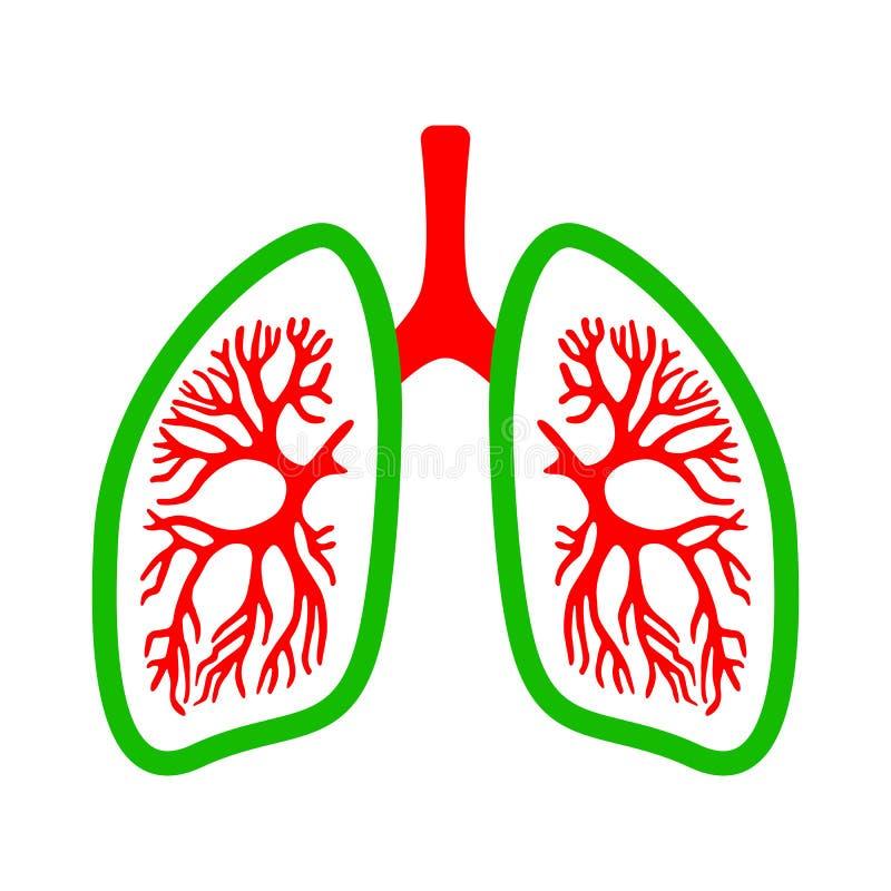 Longen medisch vectorpictogram stock illustratie