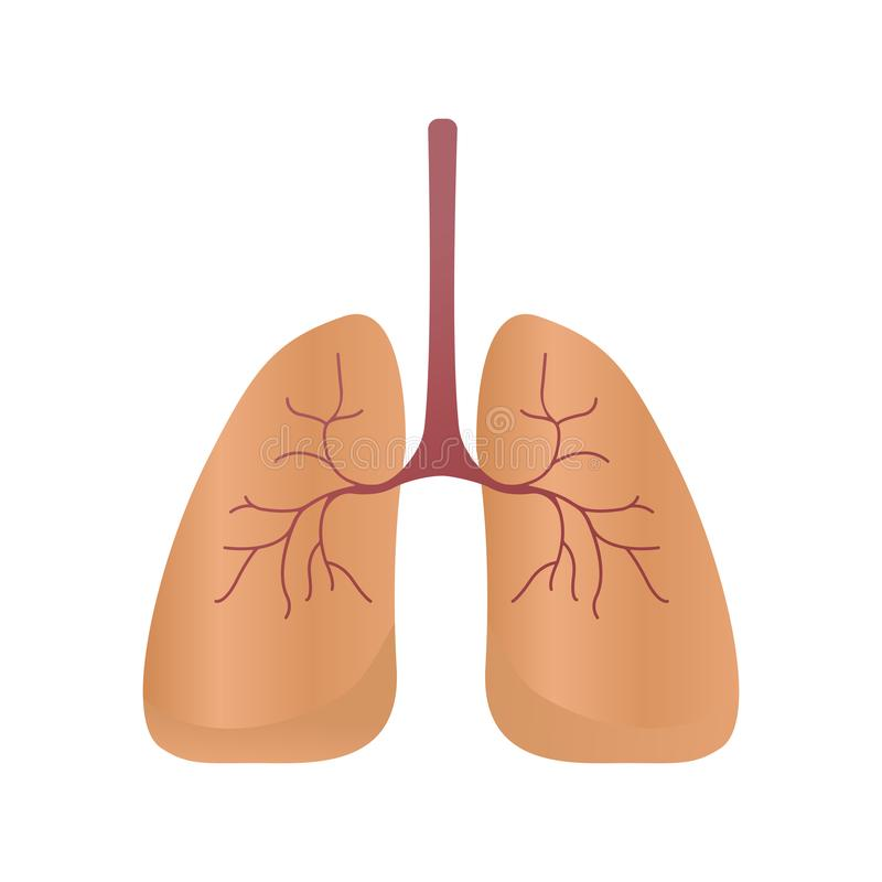 Longenpictogram, vectorstijl Interne organen van het menselijke ontwerpelement, embleem Anatomie, geneeskundeconcept Gezondheidsz vector illustratie