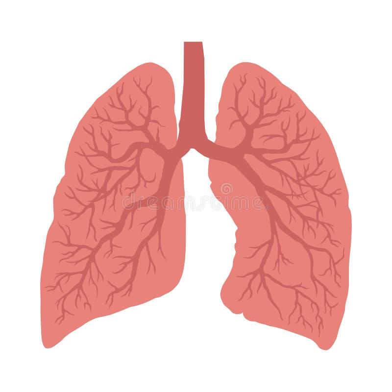 Longensymbool ademhaling Val oefening uit stock illustratie