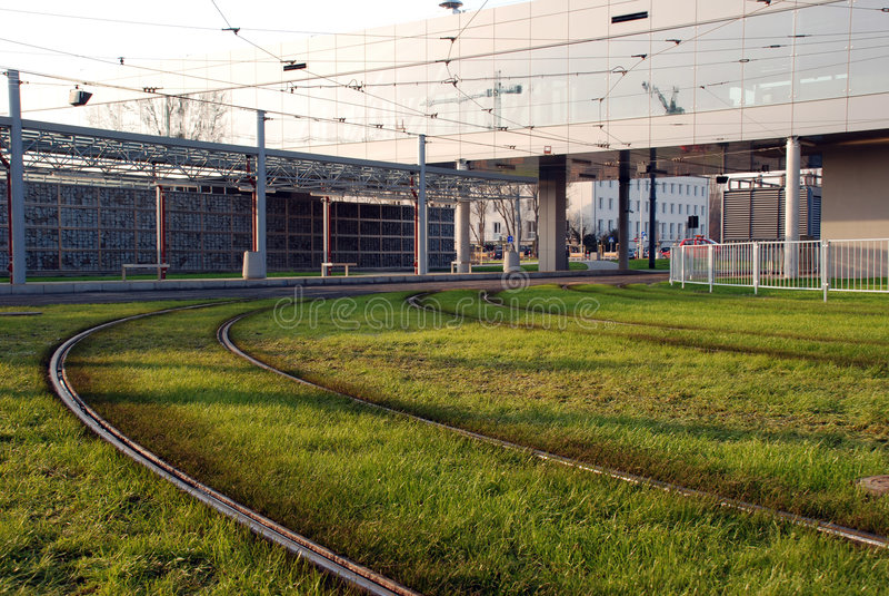 longerons de vert d'herbe image libre de droits