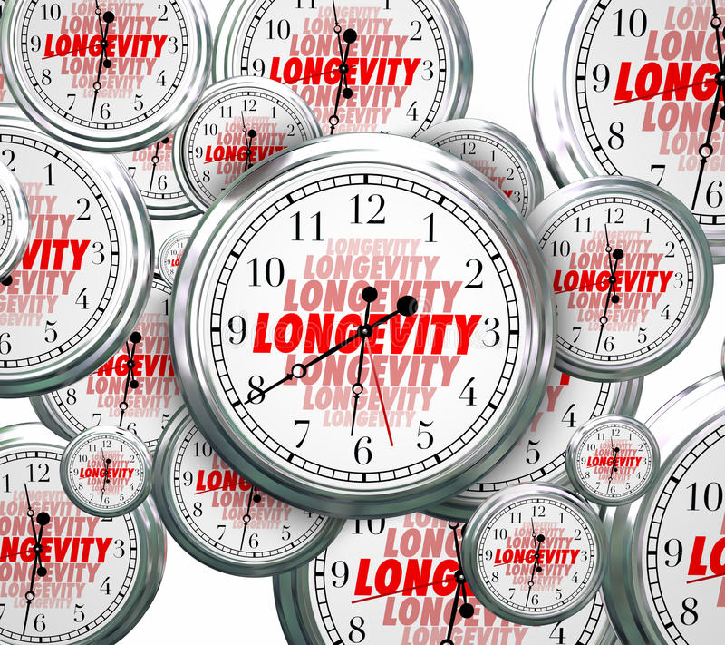 Longevity Word Clocks Time Flying Durable Lasting Experience Con. Longevity word on clock faces as time goes by to illustrate lasting and continuous experience vector illustration
