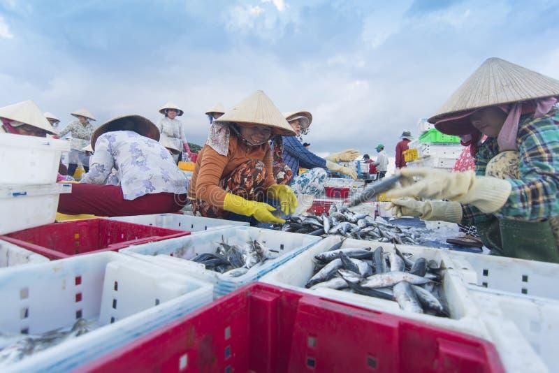 Longhai Vietname fotos de stock royalty free