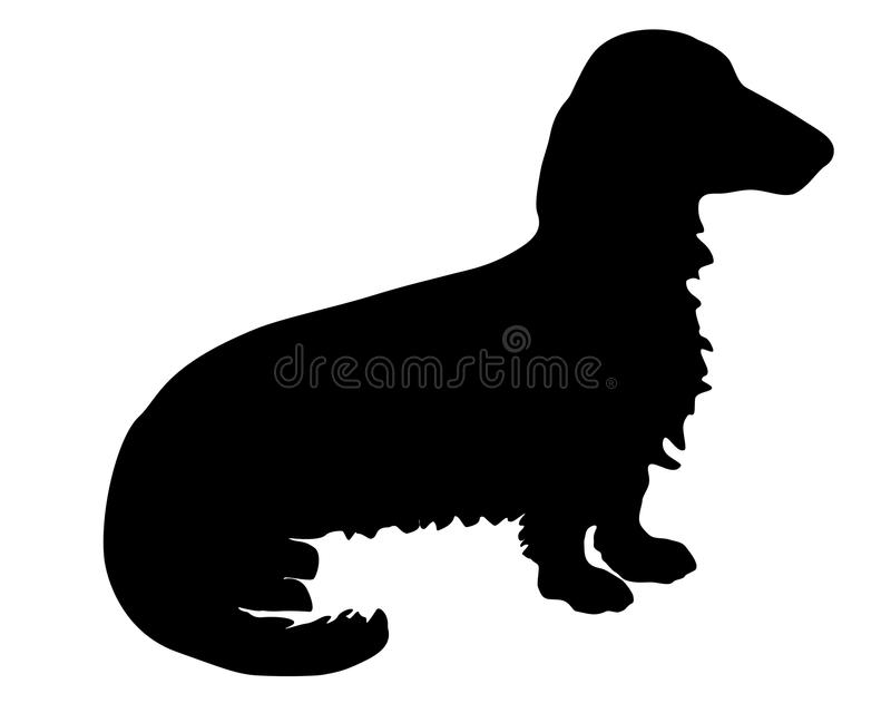 Longhaired Badger Dog. The black silhouette of a longhaired Badger Dog