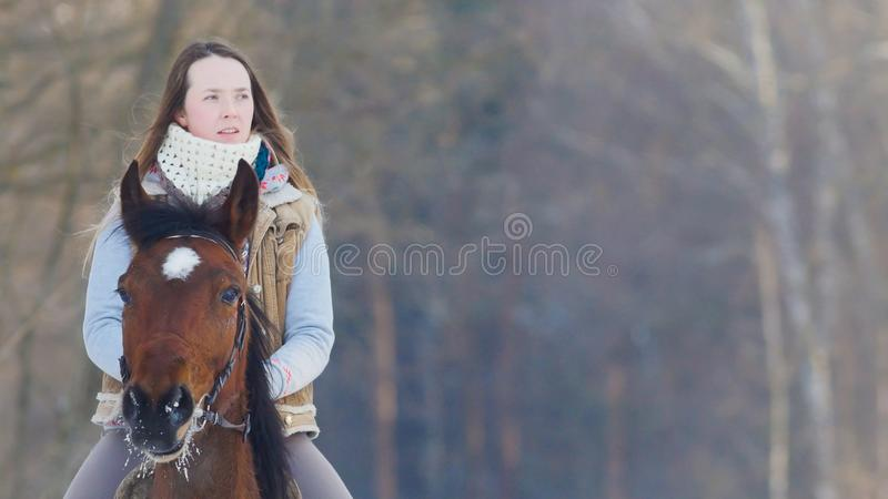 Longhaired female rider wild and fast riding black horse through the snow. Telephoto shot stock image