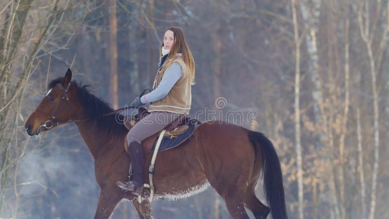 Longhaired female rider wild and fast riding black horse through the snow. Telephoto shot royalty free stock photos