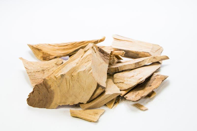 Longifolia de Eurycoma foto de stock