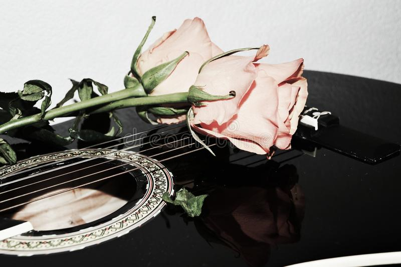 Longing for affection. Beautiful rose on the guitar strings, suggesting the need of love and affection stock photography
