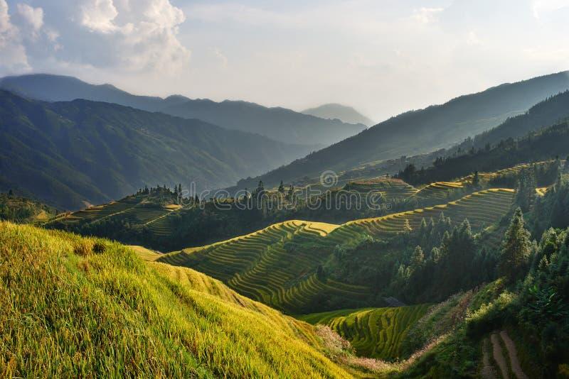 Longji Longsheng van Wengjia van rijst terrasvormige gebieden royalty-vrije stock foto