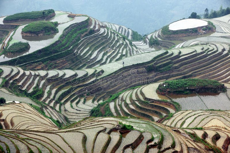 Download Longji Rice Terraces, China Stock Image - Image: 27030361