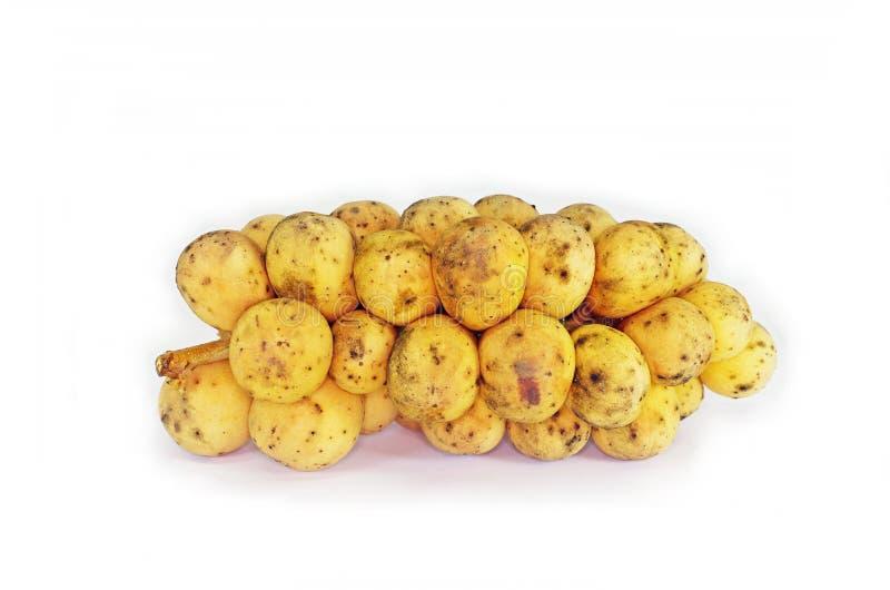 Longkong fruit group on white. Longkong fruits isolated on white background stock image