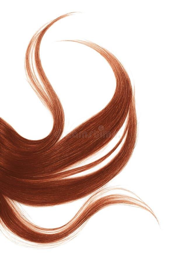 Longs cheveux en désordre de henné, d'isolement sur le fond blanc image stock