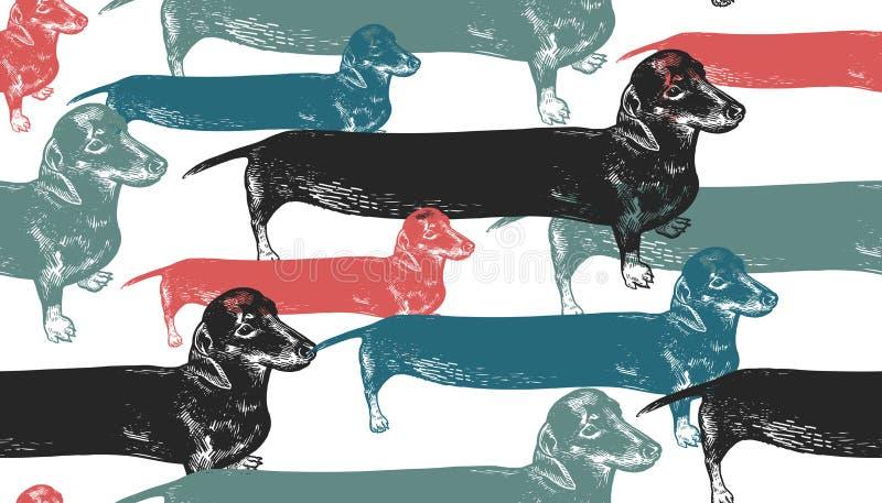 Longs chiens de teckels Configuration sans joint illustration stock