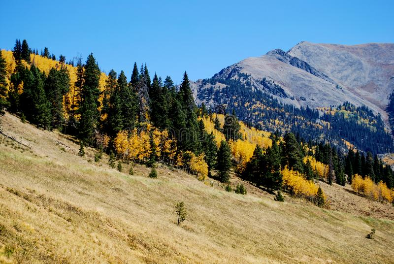 Longs Peak viewed from Estes Park, Colorado. During autumn royalty free stock image