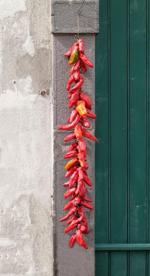Longs poivrons rouges accrochant pour sécher photographie stock