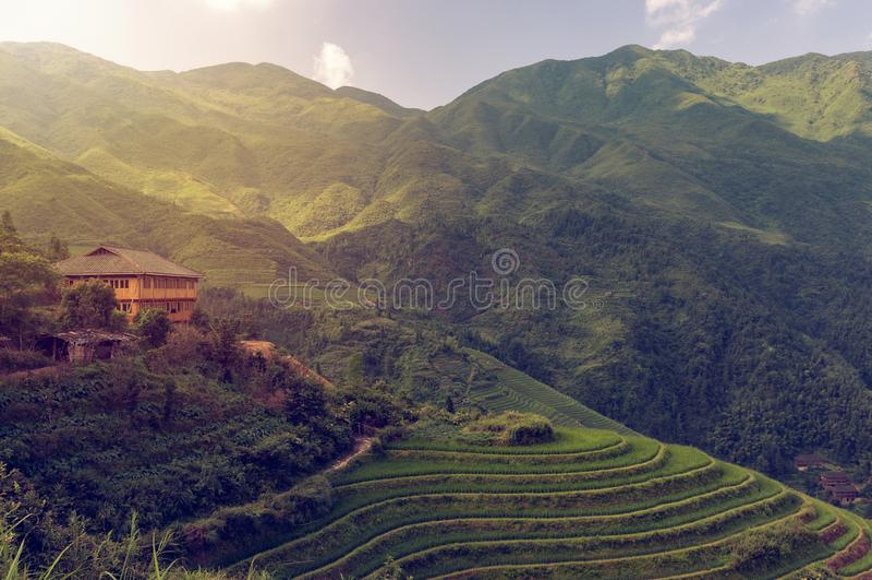 Longsheng för den härliga sikten ris terrasserar nära av den Dazhai byn i landskapet av Guangxi, Kina fotografering för bildbyråer