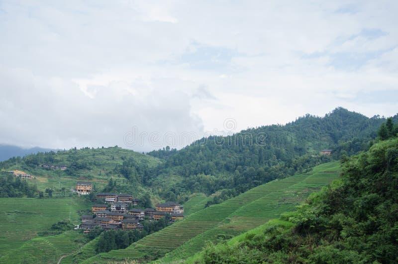 Longsheng län av för Longji för Guangxi landskapkines sceniskt område terrass royaltyfri fotografi