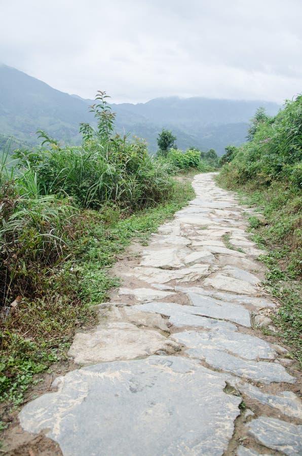 Longsheng län av för Longji för Guangxi landskapkines sceniskt område terrass royaltyfri bild