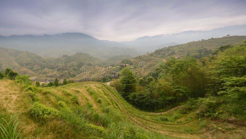 Longsheng paddy fields in China royalty free stock image