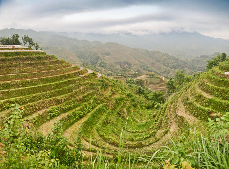 Longsheng paddy fields in China stock photo