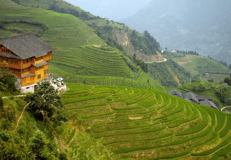 Longsheng Rice Terraces κοντά στο Guilin, περιοχή Guangxi της Κίνας στοκ φωτογραφία με δικαίωμα ελεύθερης χρήσης