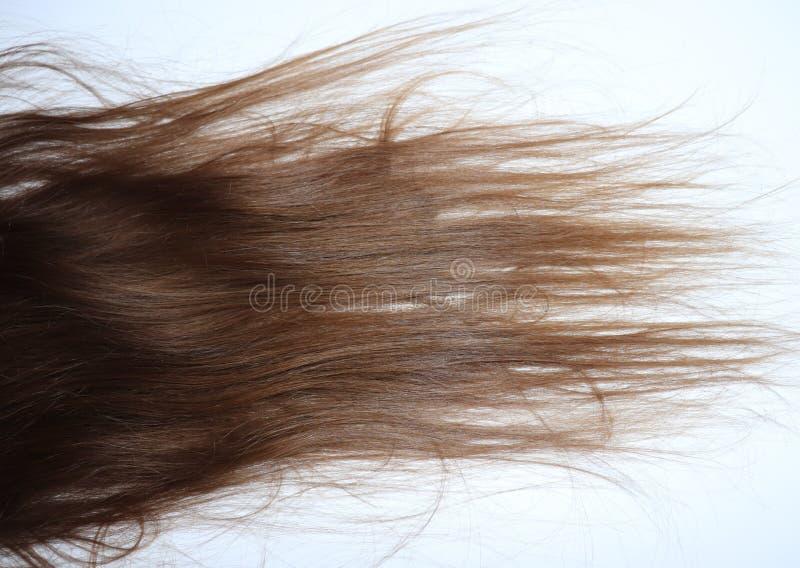 Longtemps, cheveux bruns onduleux sur une adolescente photo stock