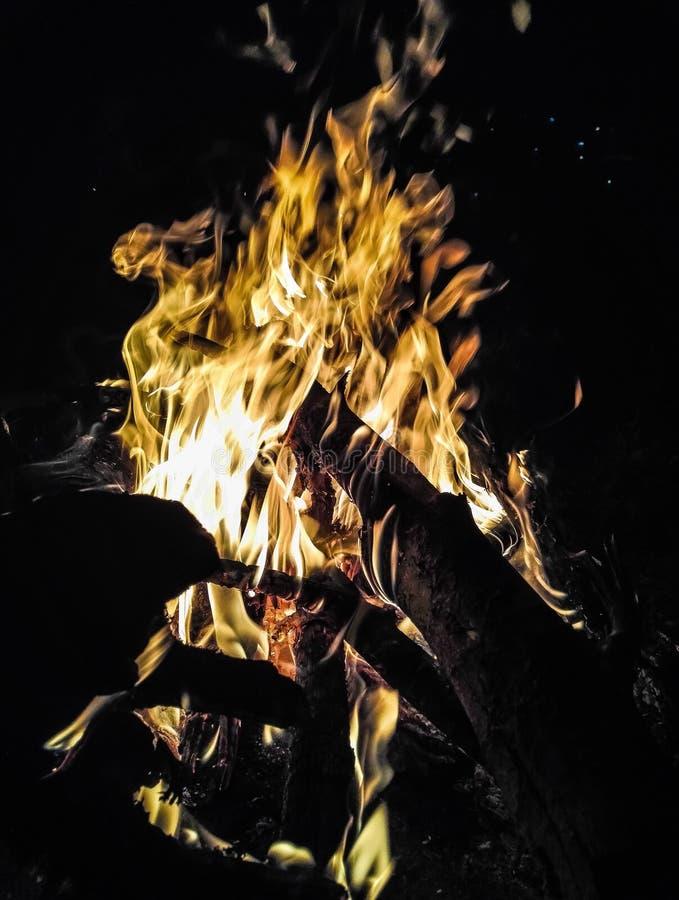 Longue exposition de la grande du feu de nuit chaleur étroite de bois de chauffage grande photo libre de droits