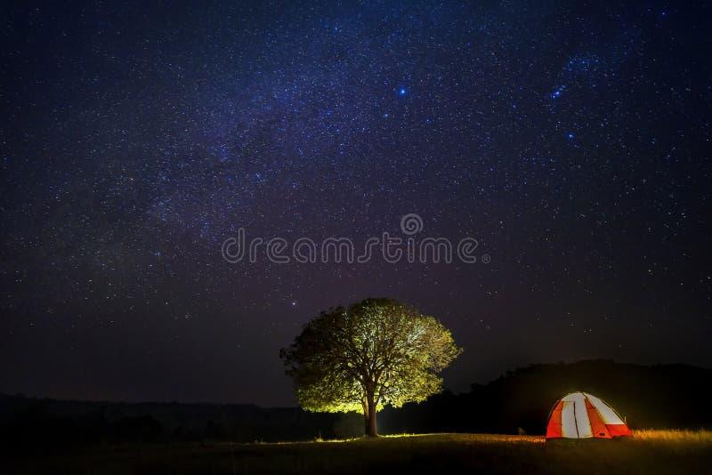 Longue photographie d'exposition avec le grain Tente de diffusion de visiteur sous le grand arbre Étoile et astronomie de manière images libres de droits