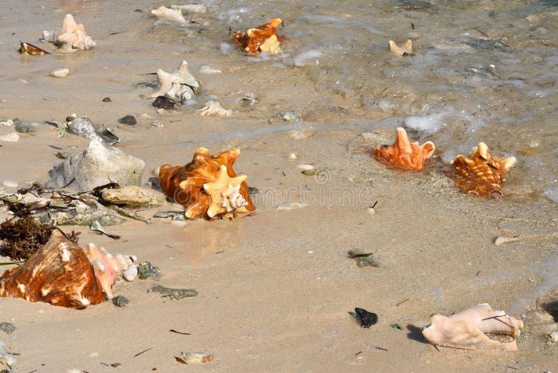 Longue plage de Kay photos libres de droits
