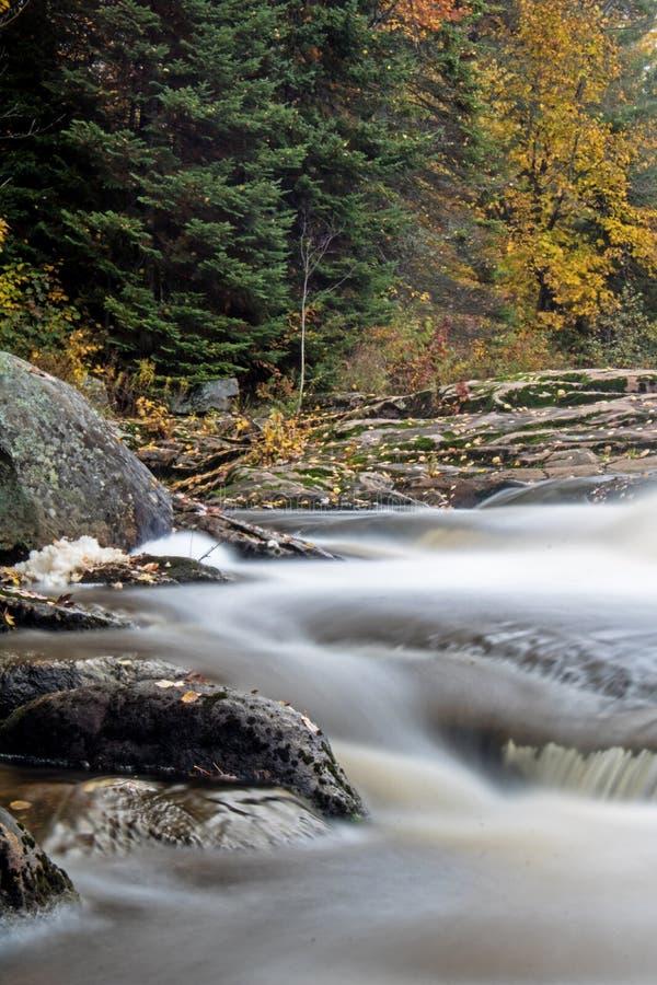Longue rapide d'exposition sur la rivière de Rosseau image libre de droits