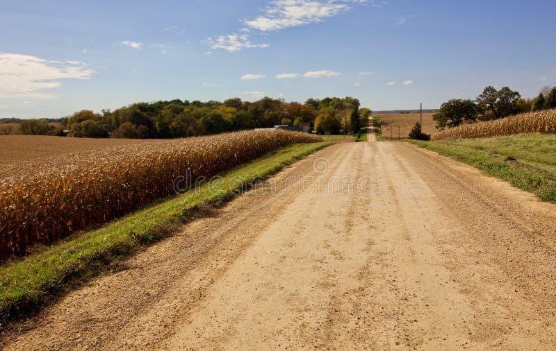 Longue route à travers la River Valley avec le ciel bleu photos libres de droits