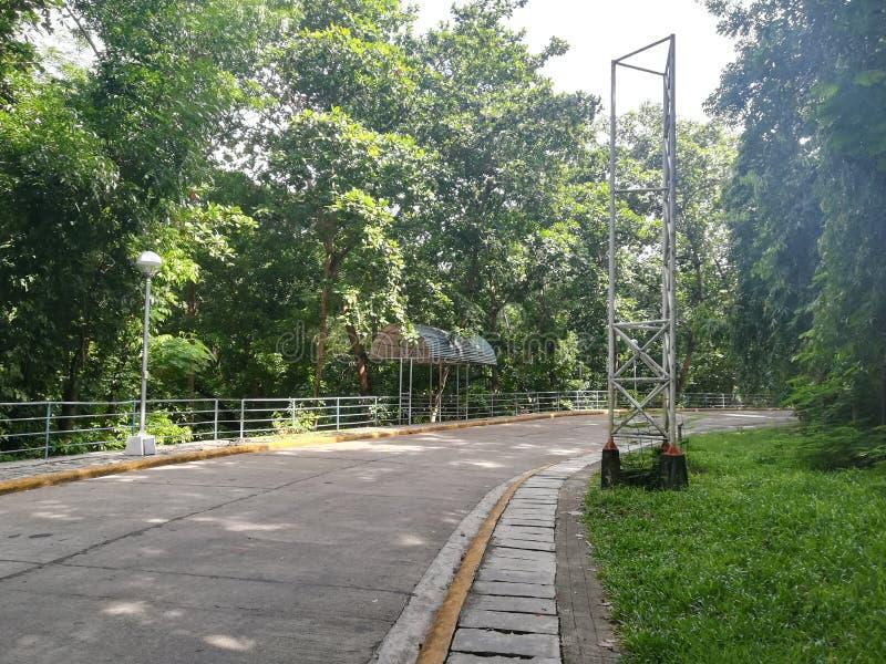 Longue route au parc de famille images libres de droits
