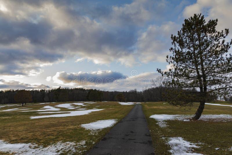 Longue route dans le paysage des arbres et du ciel images stock
