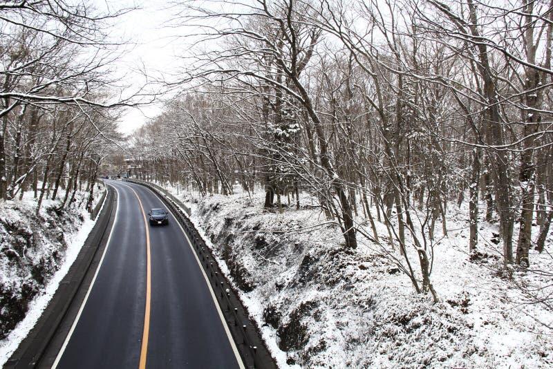 longue route dans une forêt d'hiver photographie stock